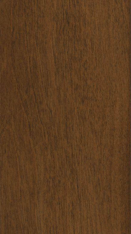 hazelnut on birch