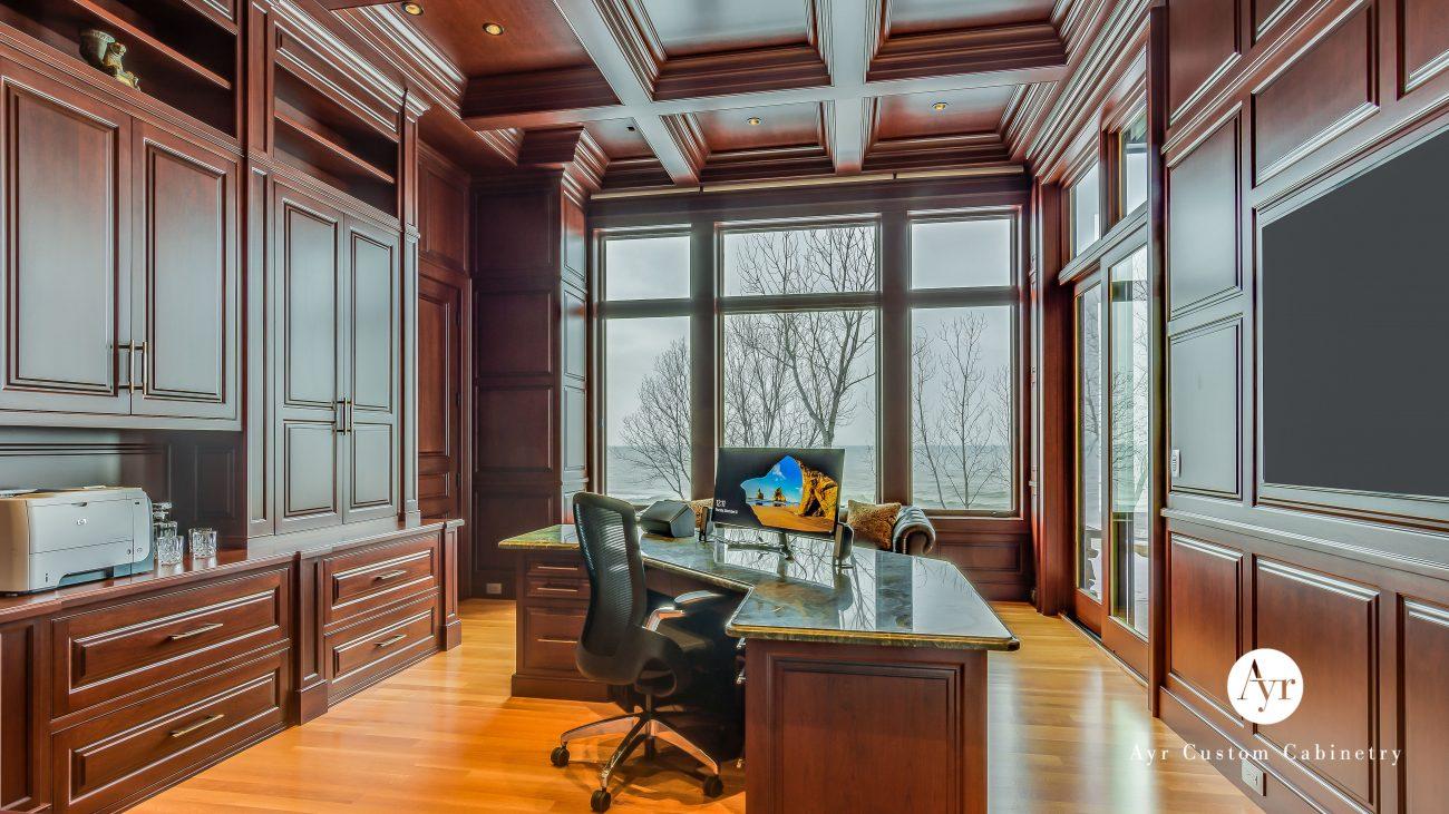 custom office cabinets tehrani office project